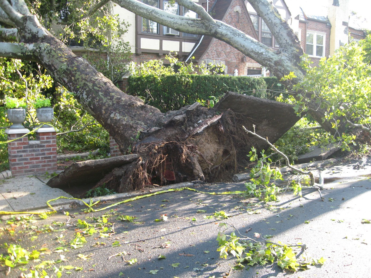 Landlords – Why Can Storm Damage Claims Be Rejected